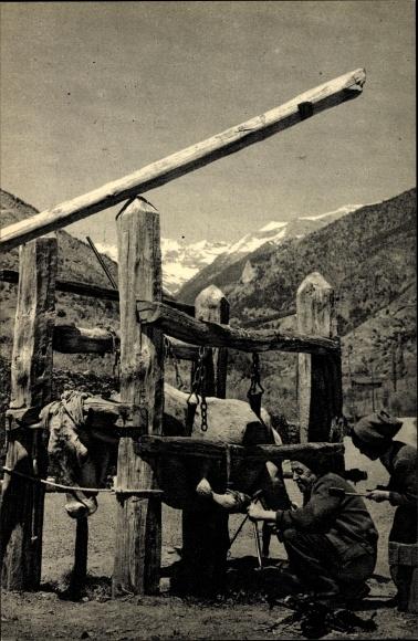 Ak La Massana Andorra, Ferrer de Vaques, Schmied beschlägt Rind mit Kuheisen