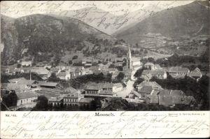 Ak Moosch Elsaß Elsass Haut Rhin, Totalansicht vom Ort