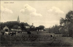 Ak Lienen im Tecklenburger Land, Blick vom Feld auf die Ortschaft, Kühe, Kirchturm