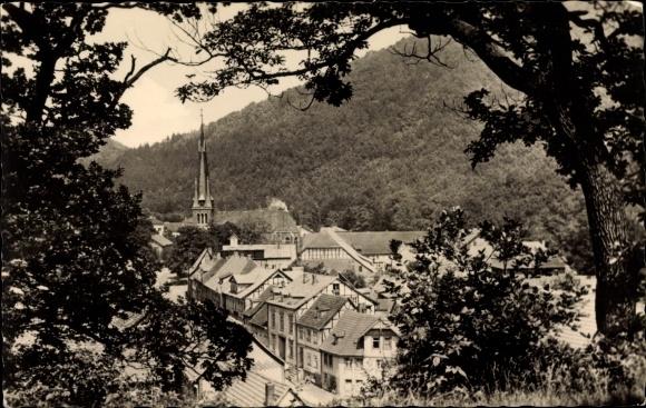 Ak Ilfeld Harztor in Thüringen, Durchblick zum Ort, Teilansicht