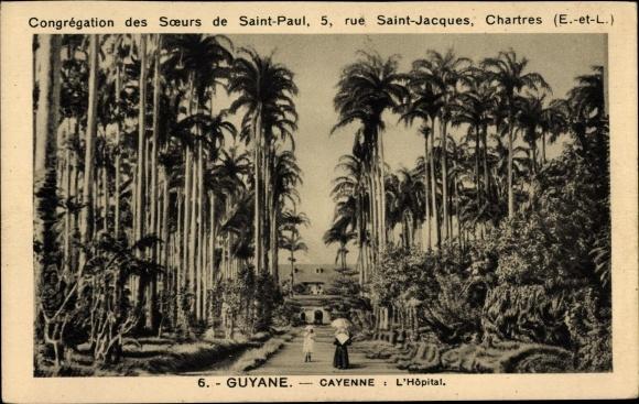 Ak Cayenne Französisch Guayana, L'Hopital, Parkanlagen, Wegpartie, Palmen