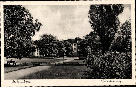 Ak Słupsk Stolp Pommern, Partie am Schraderplatz, Grünanlagen