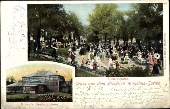 Ak Magdeburg in Sachsen Anhalt, Friedrich Wilhelms Garten, Konzertgarten, Gruson's Gewächshäuser