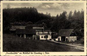 Ak Eisenberg in Thüringen, Froschmühle im Mühltal, Panorama