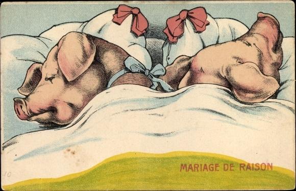 Künstler Ak Mariage de Raison, Vernunftehe, Vermenschlichte Schweine