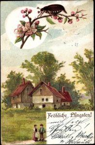 Litho Glückwunsch Pfingsten, Maikäfer auf einem Blütenzweig, Mann und Frau, Bauernhaus