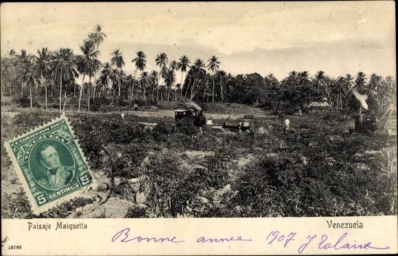 Ak Maiquetía Venezuela, Landschaftsblick, Dampflok, Palmen