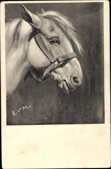 Künstler Ak Pferdeportrait, Pferdekopf mit Zaumzeug
