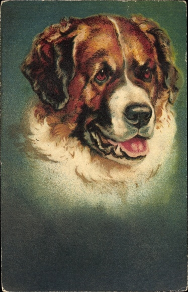 Künstler Ak Hundeportrait, Bernhardiner mit geöffneter Schnauze 0