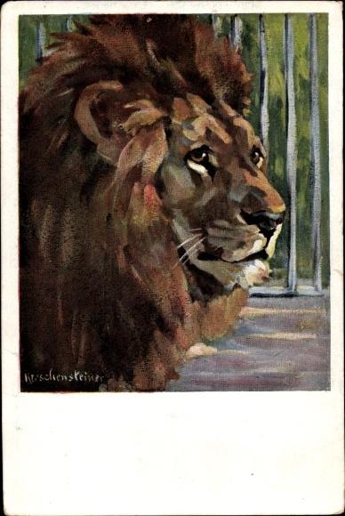 Künstler Ak Löwe in einem Käfig, Löwenkopf mit Mähne