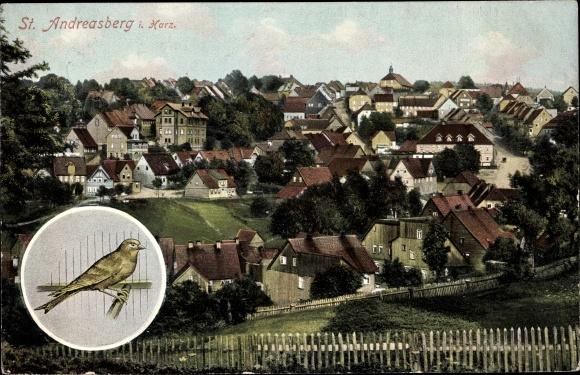 Ak St. Andreasberg Braunlage im Harz, Blick auf den Ort, Vogel 0