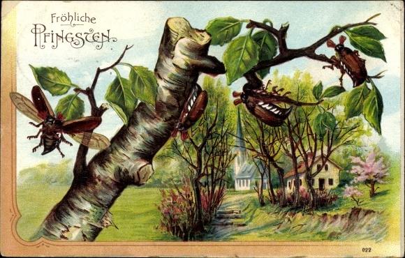 Präge Litho Glückwunsch Pfingsten, Maikäfer auf einem Baum, Landschaftsansicht mit Kirche