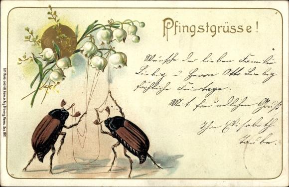 Präge Litho Glückwunsch Pfingsten, Zwei Maikäfer mit Blumen 0