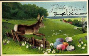 Präge Litho Glückwunsch Ostern, Osterhase auf einer Frühlingswiese, Ostereier, Schneeglöckchen