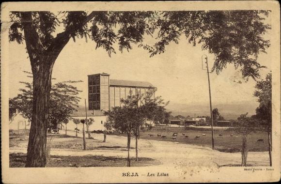 Ak Béja Tunesien, Les Lilas, Gebäude 0