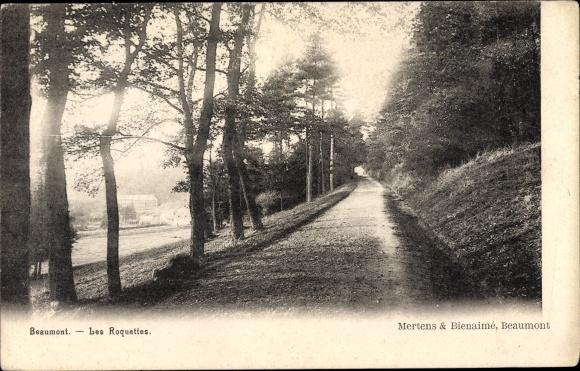 Ak Beaumont Marne, Les Roquettes, Strassenansicht 0
