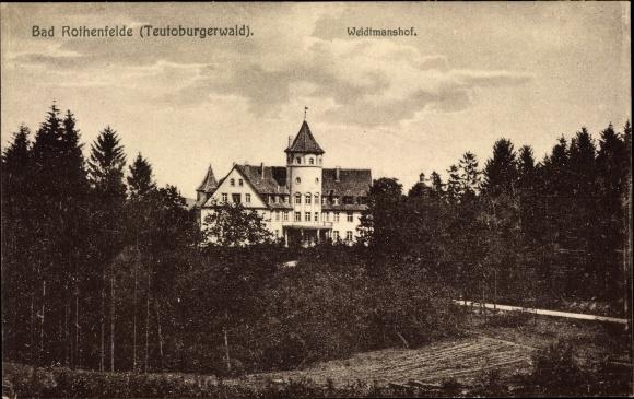 Ak Bad Rothenfelde am Teutoburger Wald, Blick über Bäume zum Weidtmannshof 0