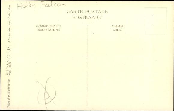 Künstler Ak Dupond, Hub., Falco subbutei, Faucon hobereau, Baumfalke 1