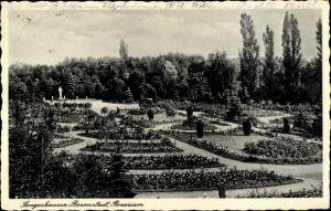 Ak Sangerhausen in Sachsen Anhalt, Blick auf das Rosarium
