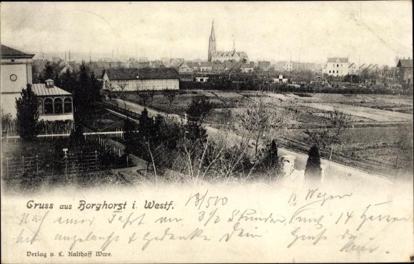 Ak Borghorst Steinfurt in Nordrhein Westfalen, Blick auf Ortschaft und Umgebung