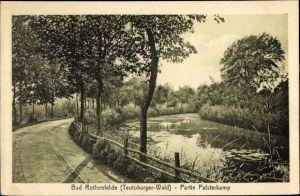 Ak Bad Rothenfelde am Teutoburger Wald, Partie Palsterkamp, Weg am Fluss