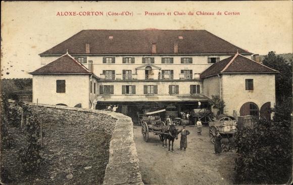Ak Aloxe Corton Côte d'Or, Pressoirs et Chais du Château