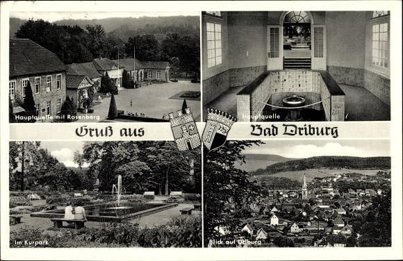 Wappen Ak Bad Driburg Nordrhein Westfalen, Hauptquelle mit Rosenberg, Kurpark Ortsblick