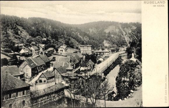 Ak Rübeland Oberharz am Brocken, Panoramaansicht von Ortschaft und Umgebung, Brücke, Fachwerkhaus