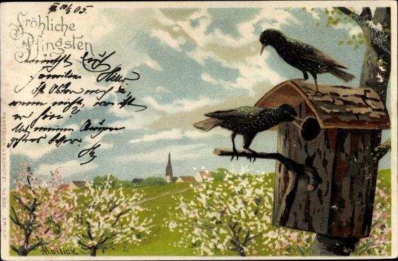 Künstler Litho Mailick, Glückwunsch Pfingsten, Zwei Vögel, Vogelhaus