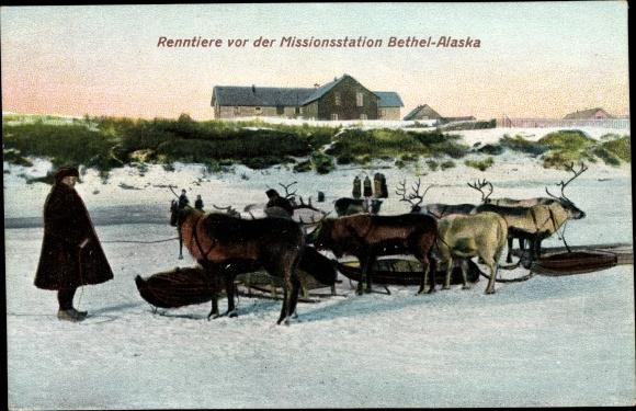 Ak Alaska USA, Rentiere vor der Missionsstation