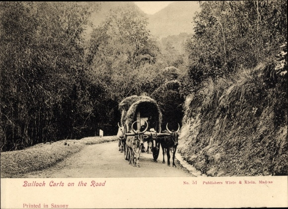 Ak Indien, Bullock Carts on the Road