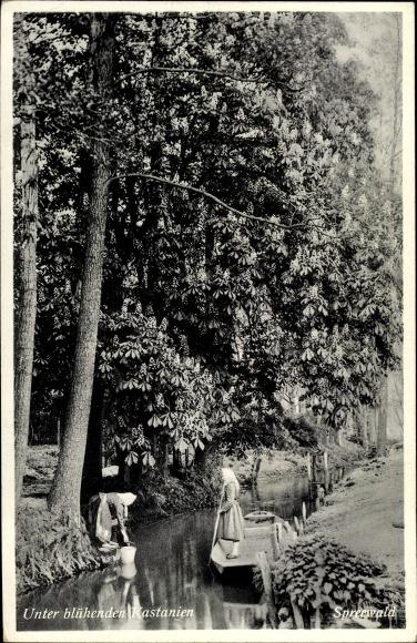 Ak Unter blühenden Kastanien, zwei Frauen in Volkstrachten aus dem Spreewald, Spreewaldkahn