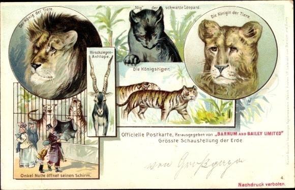 Litho Zootiere, Löwe, Tiger, schwarzer Leopard, Antilope, Barnum and Bailey Ltd, Onkel Nolte, Schirm