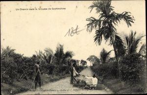 Ak Cochinchine Vietnam, Un Chemin dans la brousse de Cochinchine