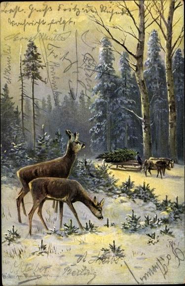 Künstler Ak Müller, M. jun., Rehe im Wald, Mann mit Tannenbaum im Ochsenschlitten