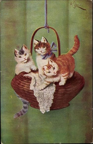 Künstler Ak Drei kleine Katzen spielen auf einem Weidenkorb