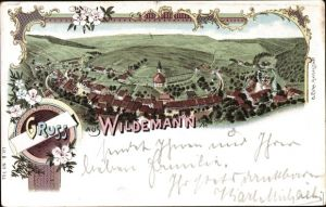 Litho Wildemann Clausthal Zellerfeld im Oberharz, Panorama vom Ort