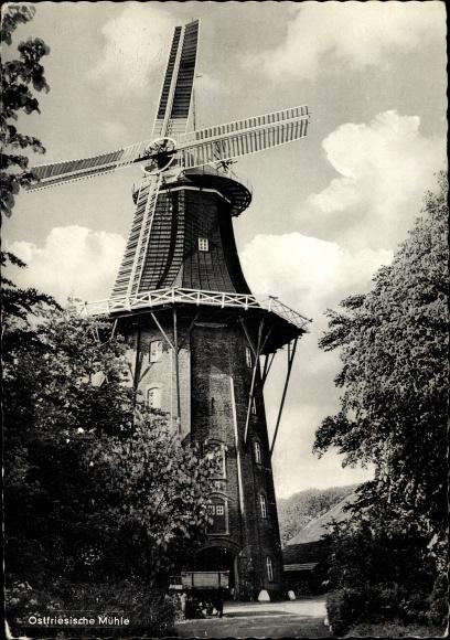 Ak Ostfriesland, Ostfriesische Mühle, Windmühle, Gehöft