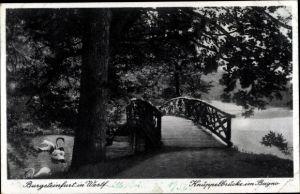 Ak Burgsteinfurt Steinfurt in Nordrhein Westfalen, Knüppelbrücke im Bagno, Schwäne