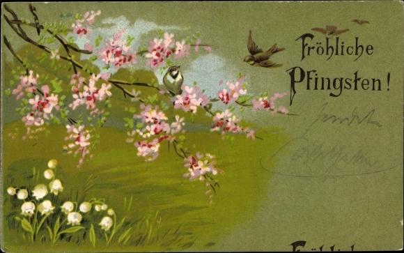 Präge Ak Glückwunsch Pfingsten, Kirschbaumast, Baumblüte, Vögel