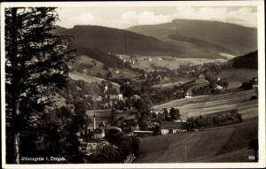 Ak Rittersgrün Breitenbrunn im Erzgebirge, Panorama vom Ort