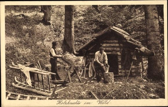 Ak Holzknechte im Wald, Beim Holz Hacken, Holzschlitten
