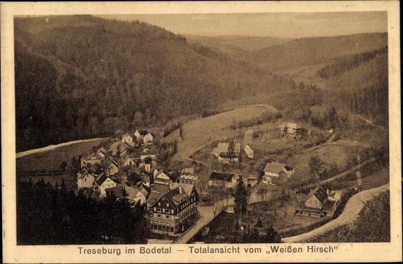 Ak Treseburg Thale im Harz, Totalansicht vom Ort, Blick vom Weißen Hirsch