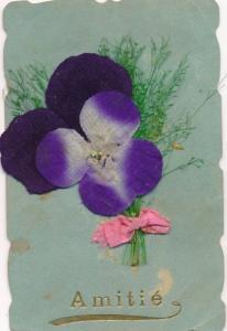 Stoff Material Ak Amitié, Stiefmütterchen, lila Blüte, getrocknete Gräser