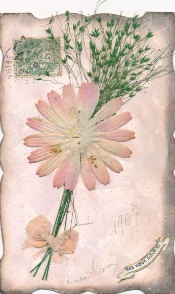Stoff Material Ak Glückwunsch, rosafarbene Blüte, getrocknete Gräser