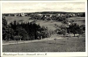 Ak Neusatz im Schwarzwald, Panorama vom Ort, Straßenpartie