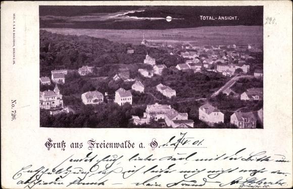 Ak Bad Freienwalde an der Oder, Totalansicht vom Ort