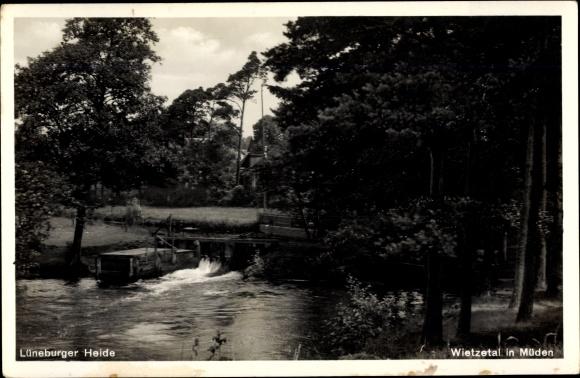 Ak Müden an der Örtze Faßberg in der Lüneburger Heide, Wietzetal, Teichpartie, Panorama
