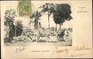 Ak Charrette Annamite, Boeufs, Marchands, Cochinchine Vietnam