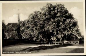 Ak Bordesholm in Schleswig Holstein, 600jh Linde